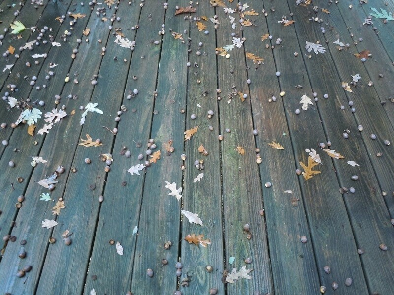 Falling leaves on wooden deck can result in mold and mildew development
