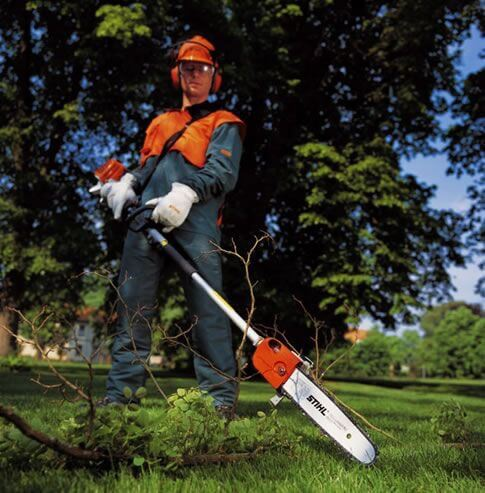 Removing bush with a pole saw is the best and safest solution